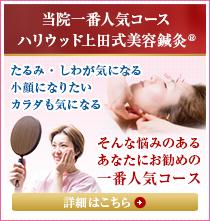 当院一番人気コースハリウッド上田式美容鍼灸詳細はこちら